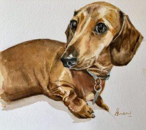 Art for Pets - Dachshund