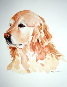 Water colour Dog