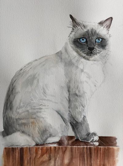 Watercolour Kitty Pawtrait