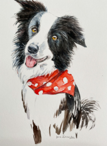 Collie with Red Scarf