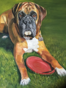 Boxer Dog - Oil Painting