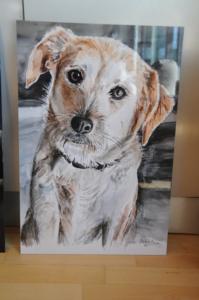 Framed Dog 500x753