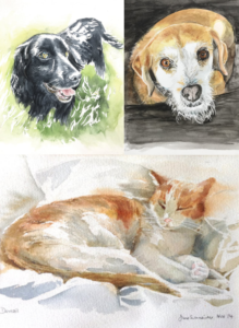 Pawtraits Collage