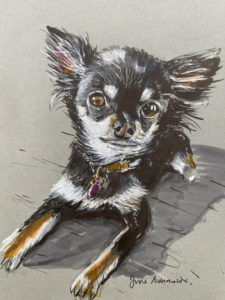 Header - Doggy Image