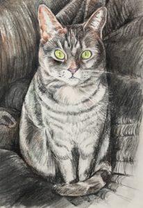 Portrait of Kitty