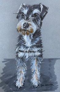 Pooch Portrait After