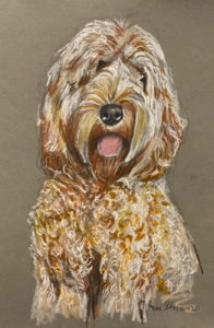 Pooch Portrait After