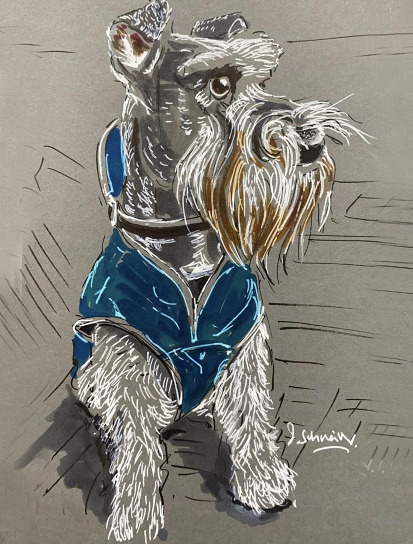 Mr Woody in his blue coat